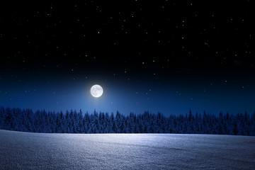 Vollmondnacht im Winter