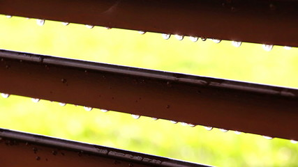 Rain drops on blinds, close up