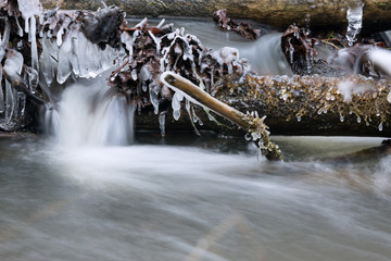 Icicles on the stream