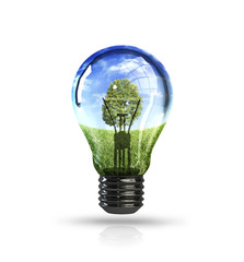 Ecology light bulb concept