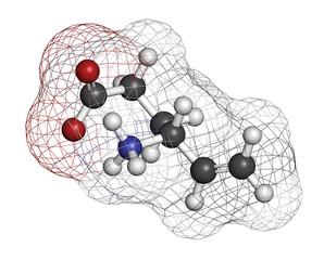 Vigabatrin epilepsy (seizures) drug molecule.