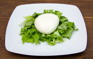 Mozzarella with salad on the plate on wooden table
