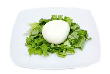 Mozzarella with salad on plate on white background