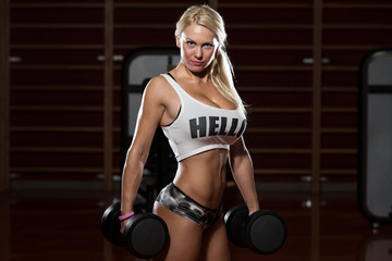 Beautiful Fit Healthy Woman In Gym Sports Clothing