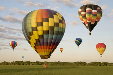 Various hot-air balloons floating over a field
