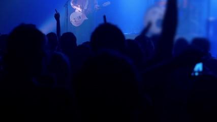 People having fun on rock concert in the club