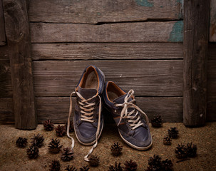 blue man's casual shoe on wooden background