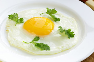 fried egg close up on a white plate