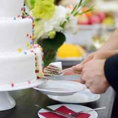 A bride and a groom are cutting a wedding cake