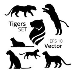 Tiger set vector