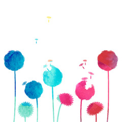watercolor dandelion background