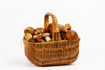 Basket full of mushrooms