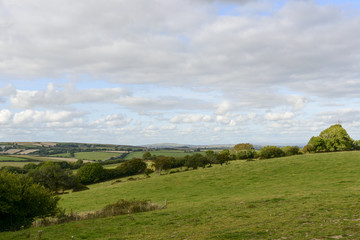 grass fields in hilly countryside, Cornwall