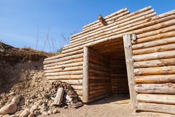 Wooden wall and open door of old underground sauna