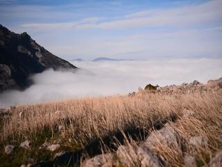 zirveden sis bulutlarına bakmak