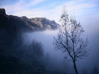 dağ zirvesinde sis bulutlarının hareketliliği
