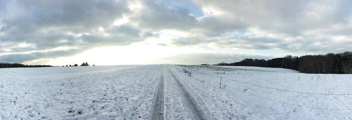 Feldweg im Schnee - Panorama