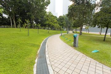 pedestrian way in park
