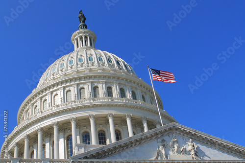 Tuinposter Historisch geb. Capitol Building in Washington DC USA