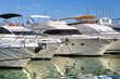Moored yachts - 75341923