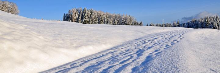 verschneiter weg