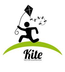 Kite design over white background vector illustration