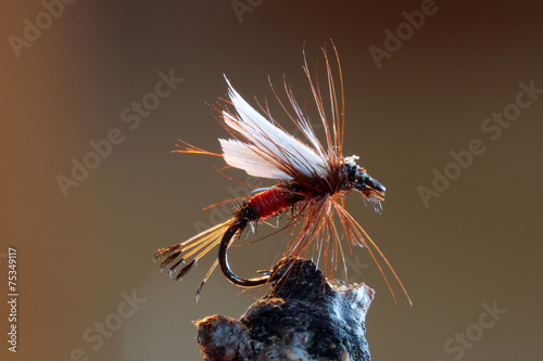 Leinwandbild Motiv Red fly fishing lure