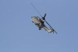 Hélicoptère COUGAR AS532