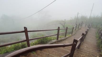 stairway in Sri Lanka