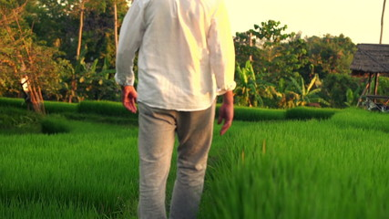 Young man walking through rice field during sunset