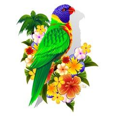 Rainbow Lorikeet on Tropical Flowers