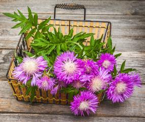 Bouquet of purple cornflowers