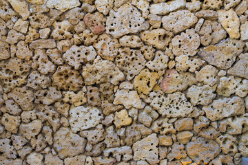 porous pumice stones Wall
