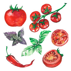 vegetables_set_drawn_watercolor_blots_and_stains_with_tomatoes_p