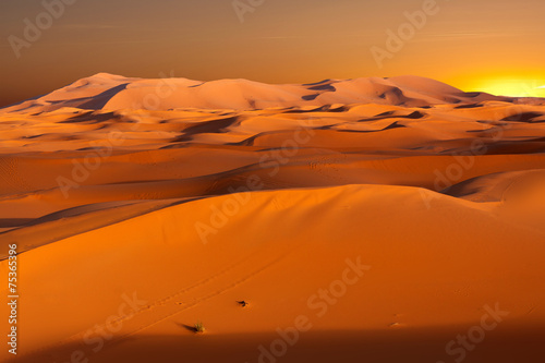 Dunes in Morocco at sunset - 75365396