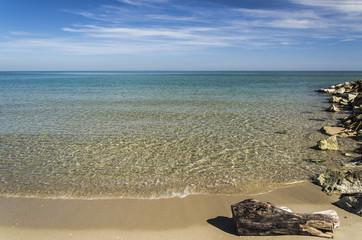 Spiaggia,mare, tronco e scogli