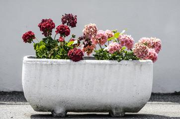 Vaso grande con fiori