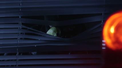 Robber in mask pointing banana gun at police