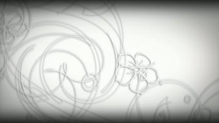 Sfondo bianco con fiori in evoluzione Erym