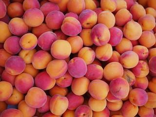 apricot market organic