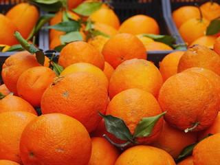 oranges market