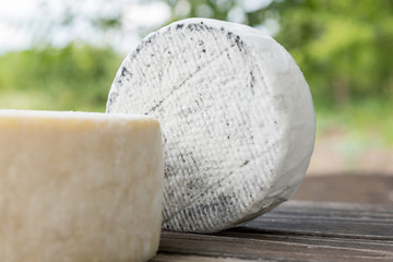 Head of goat cheese