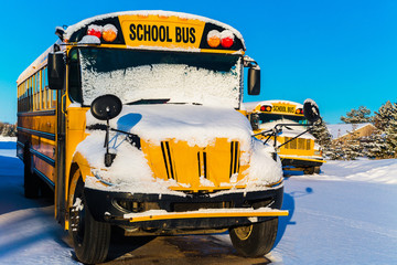 Winter School Buses