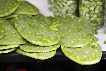 Cactus plant - nopal - fresh produce