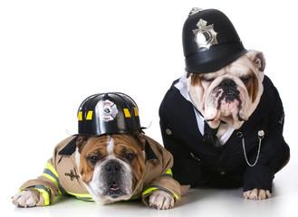 dog firefighter on policeman