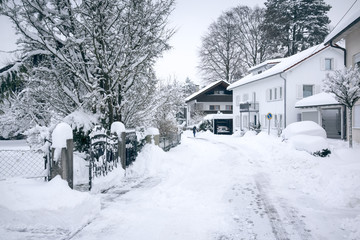 typical winter scenery
