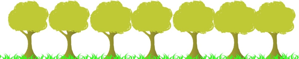 ligne d'arbres
