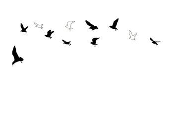 fliegende möven