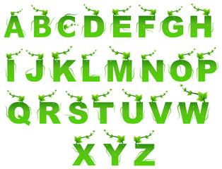 Green Nature English Alphabets