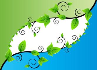Fresh Leaves Background